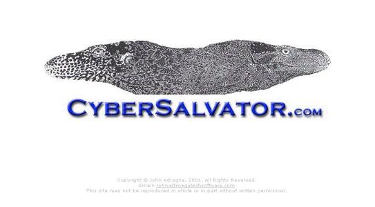 Cyber Salvator