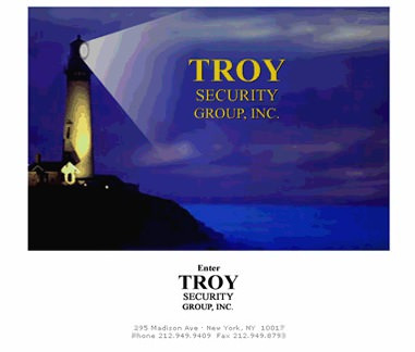 Troy Security Group, Inc.